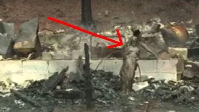 """Photo of """"معجزة وسط الدمار"""": النيران المستعرة تدمّر كل شيء ما عدا تمثال ليسوع"""
