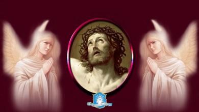 Photo of ما هي عبادة رأس يسوع الأقدس التي يرغب الرب أن نعرفها وننشرها