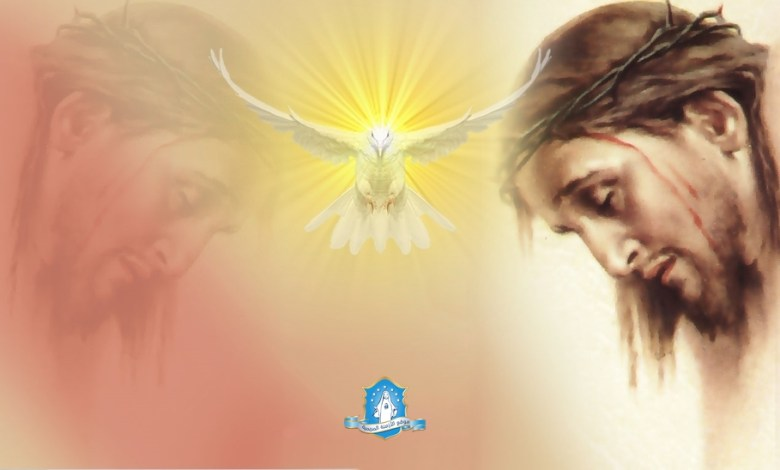 Photo of صلاة إلى رأس يسوع الأقدس كرسي الحكمة الإلهية