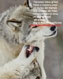 seremos lobos