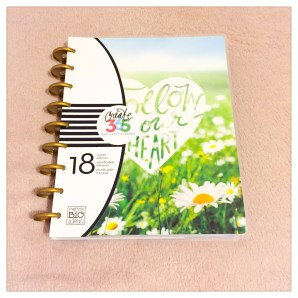 2016-2017 Classic Happy Planner in Picture Quote