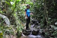 Aufstieg im Fluß