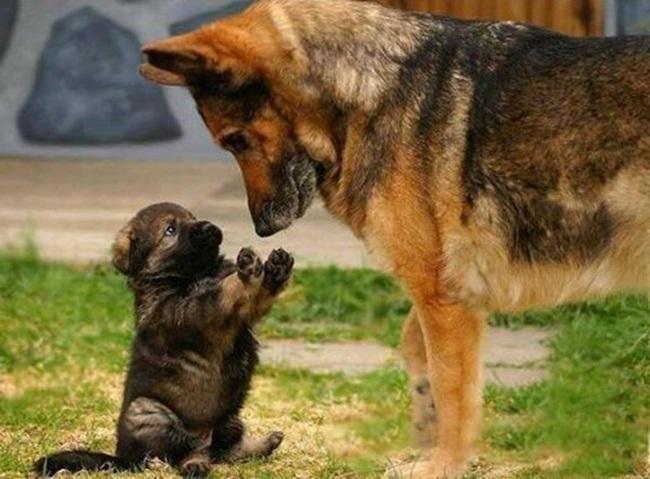 padre e hijo - copia
