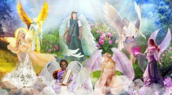 12 Transformerende Shambhala Weg Bereidsters