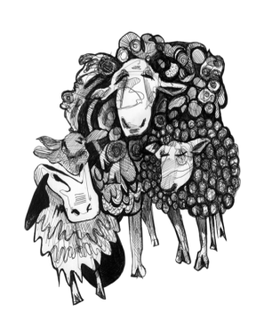 Sheep- Set 2, Pen, 2015