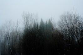 Maria Windschüttel - Lumessa