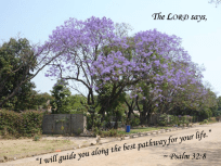 The Lord Will Guide You Along the Best Path