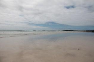 galapagos_isabela_beach-7
