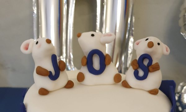 Fondant Cake Toppers Personalised Mice