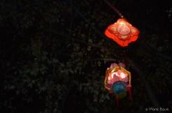 Lanternes de fête - Rue de la République