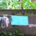 #1 Zwanger op Bali