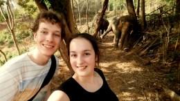 Een olifant wassen