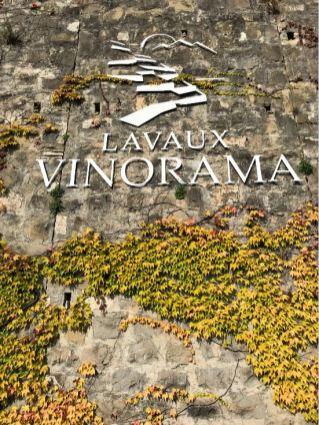 Lavaux Vinorama in Rivaz
