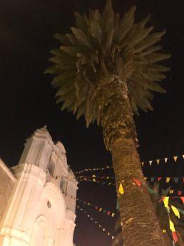 Convento de Santa Teresa at night