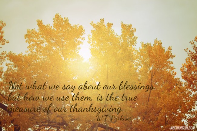 Not what we say about our blessings, but how we use them, is the true measure of our thanksgiving.