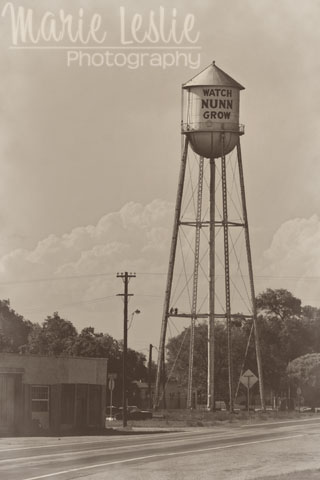 nunn water tower