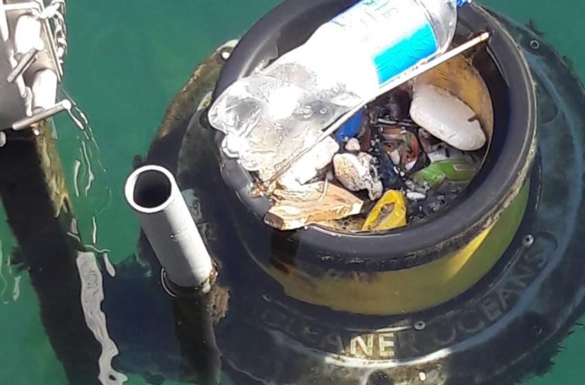 Giornata del mare, i volontari puliscono i fondali del porto e le spiagge storiche