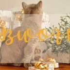 Maries Adventskalender | Tag 2