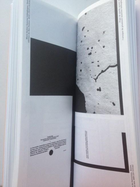 Catalogue Les artistes face aux livres