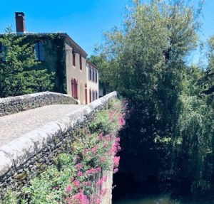 small bridge in village