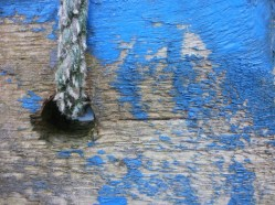 Detail, Mousehole harbour. Digital photo (unaltered). Mari French.