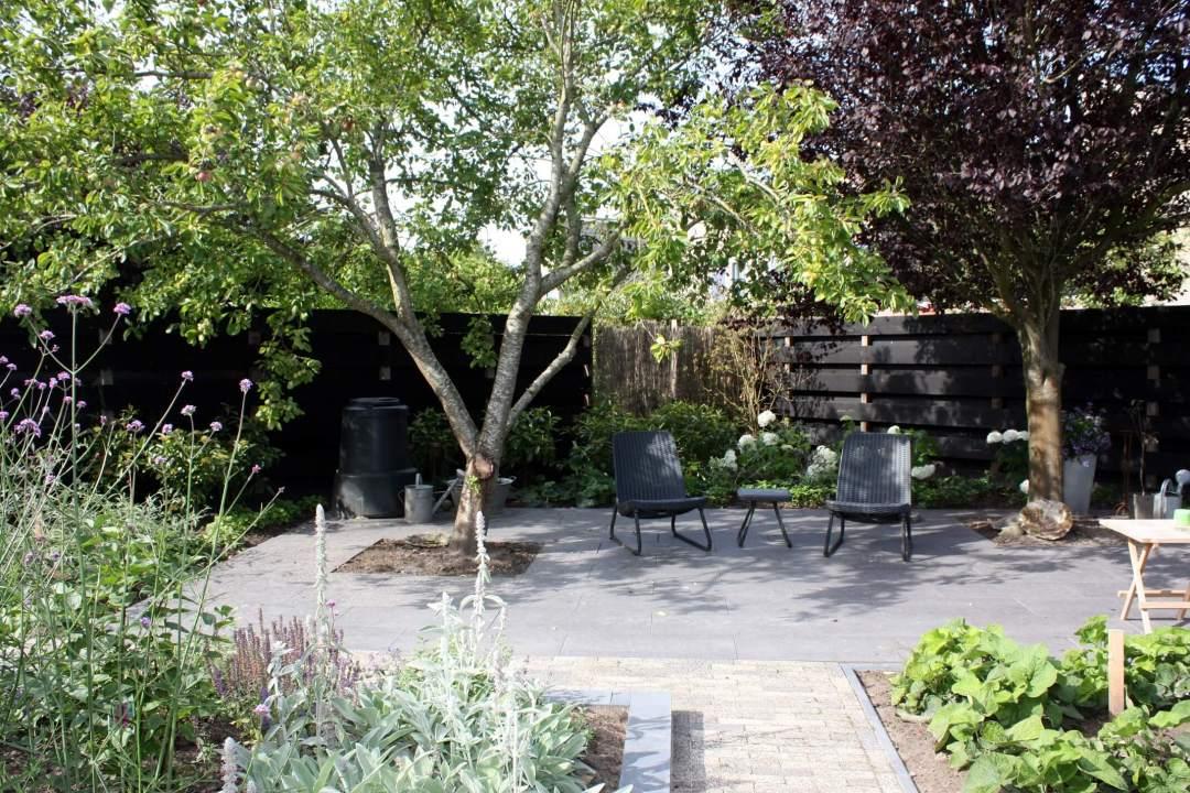 Tuin met fruitboom na renovatie