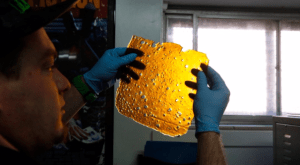 """A man holds a sheet of THC concentrate known as """"shatter,"""" in Denver, Colorado. (Brennan Linsley/Associated Press)"""