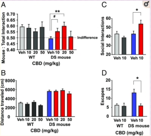 Exercise increases plasma THC concentrations in regular cannabis users