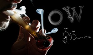 Is Low THC Cannabis the Next Big Thing? – Floral Hemp Hits Europe