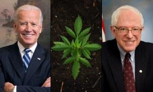 Killer Mike Challenges Joe Biden To Adopt Bernie Sanders's Marijuana Legalization Plan