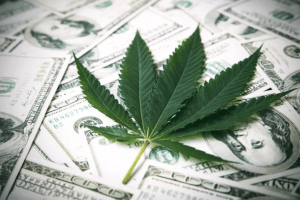 Marijuana Legalization 2021: These U.S. States Could Legalize Weed in 2021