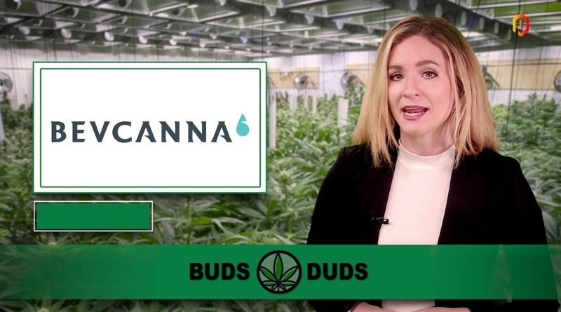Buds & Duds: Cannabis stocks sink as Cronos, Tilray feel the effects of oversupply in Canada