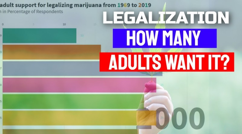 How Many Adults Support the Federal Legalization of Marijuana | Cannabis