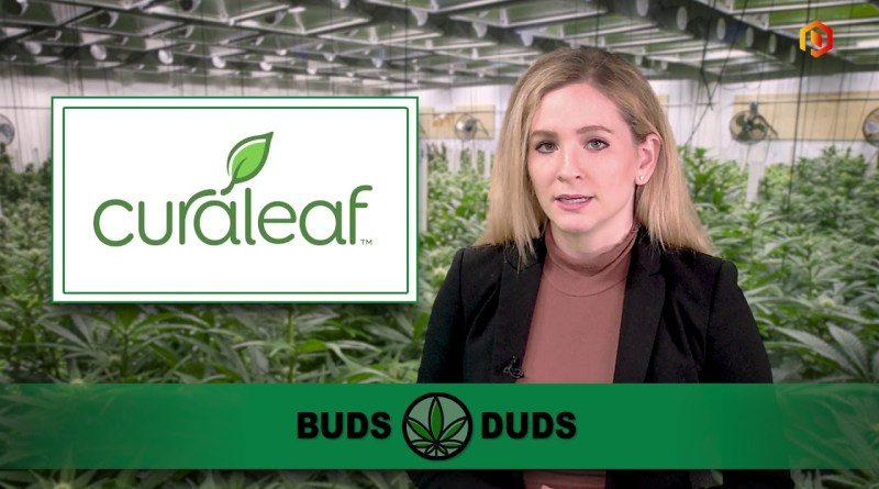 Buds & Duds: Cannabis stocks hold steady; Lexaria rises on amended agreement with Cannadips