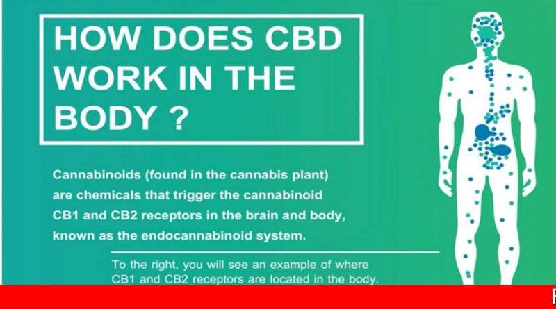 CBD OIL LEGAL IN OHIO,CBD OIL IN FLORIDA,