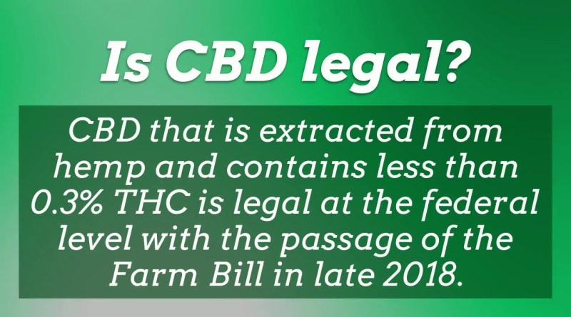CBD Oil Frequently Asked Questions 2020