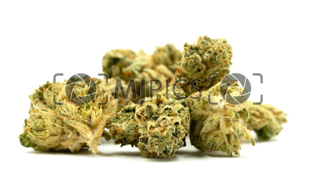 Bruce Banner x White Russian 10000609 download