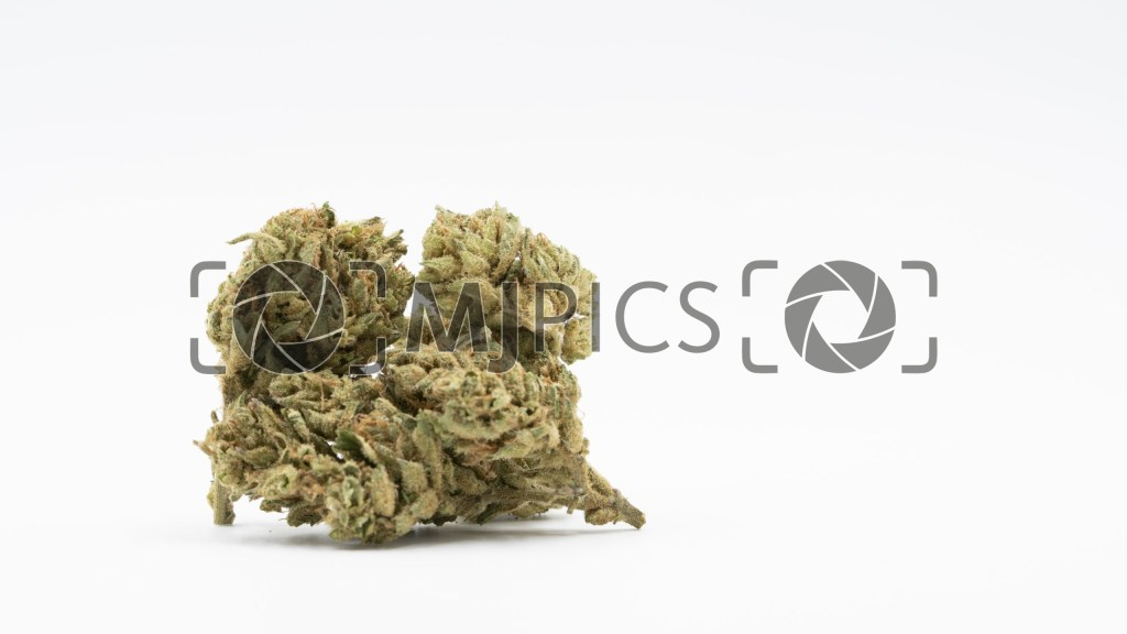 Green Crack x Super Silver Haze 10000806 download