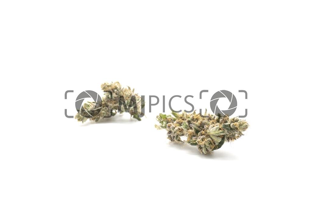 Grape Ape 10001162
