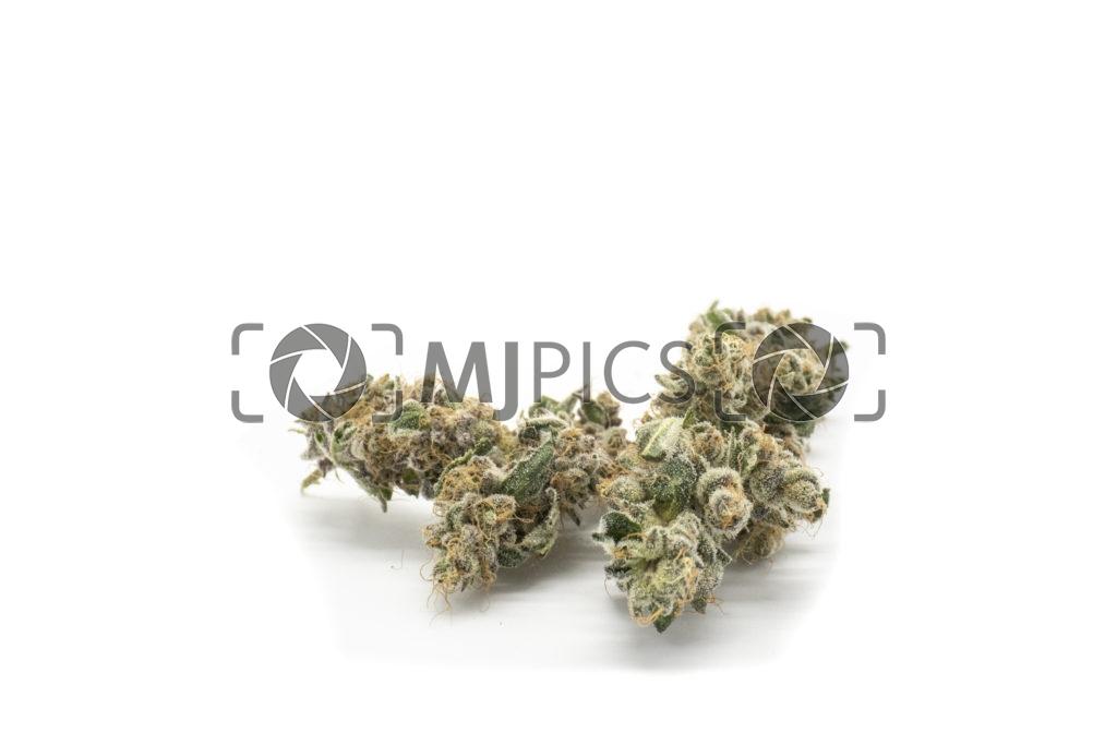 Grape Ape 10001170