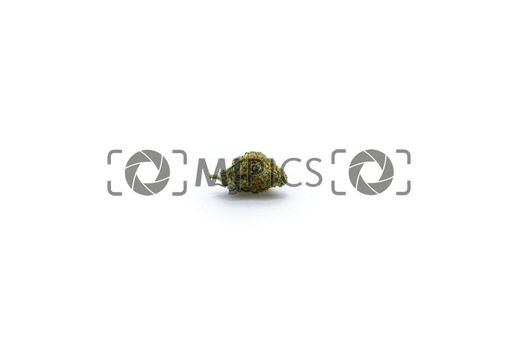 Oreoz 10001484