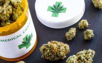 Medical Marijuana Resume