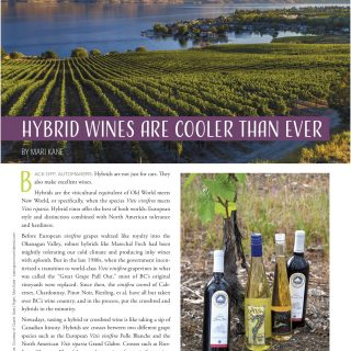 Hybrid Wines cooler than ever from Edible High Summer 2019 pg 45