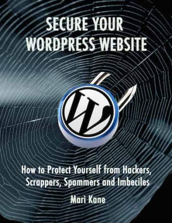 Secure your website spiderweb blue 400