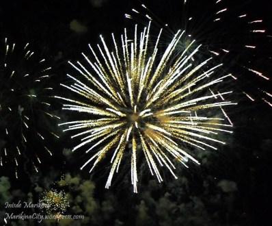 riverbanks fireworks 2013 (18)