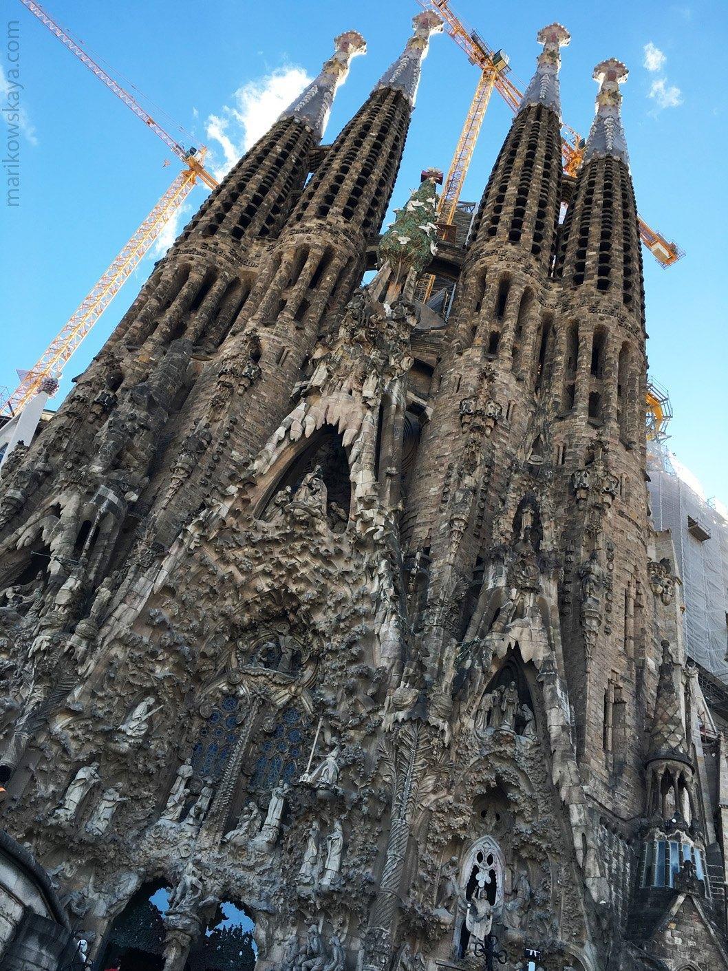 barcelona sagrada familia (5)