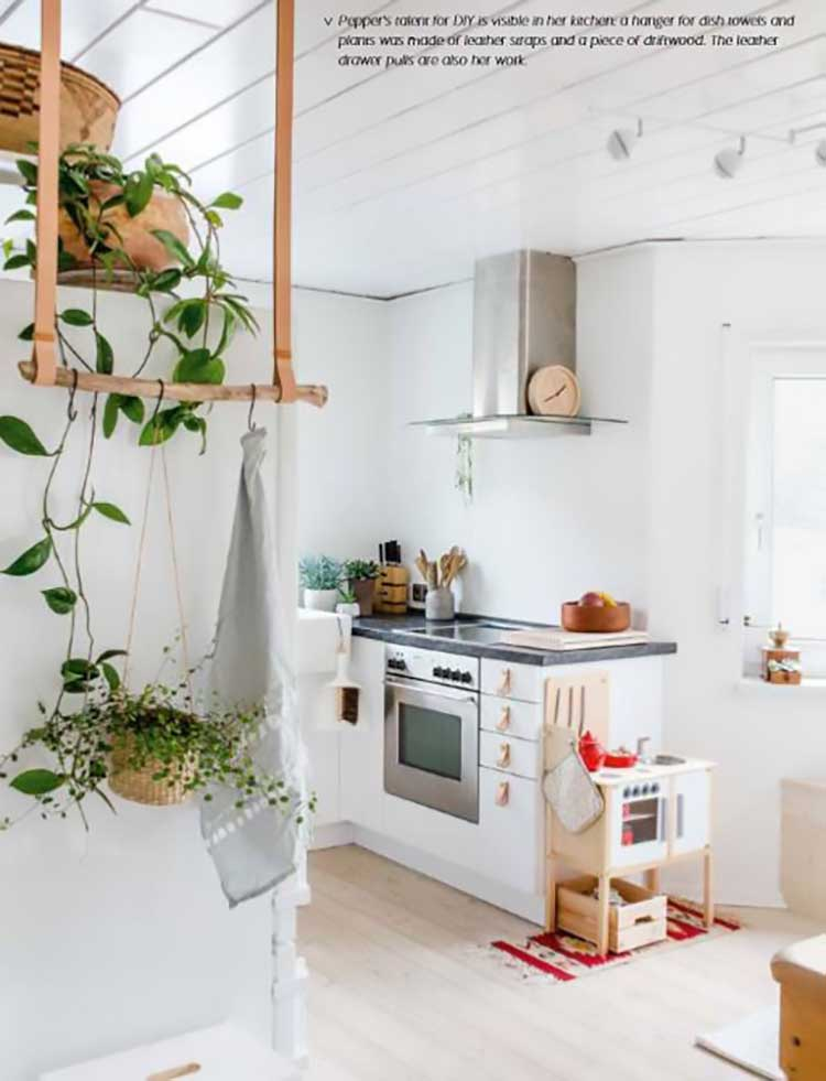 Insta Worthy Indoor Plants to Freshen Up Your Home