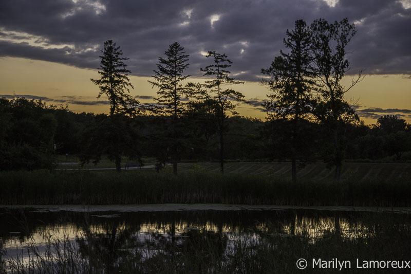 Golden hour slides into Twilight