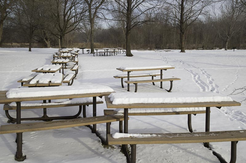 A line of picnic tables