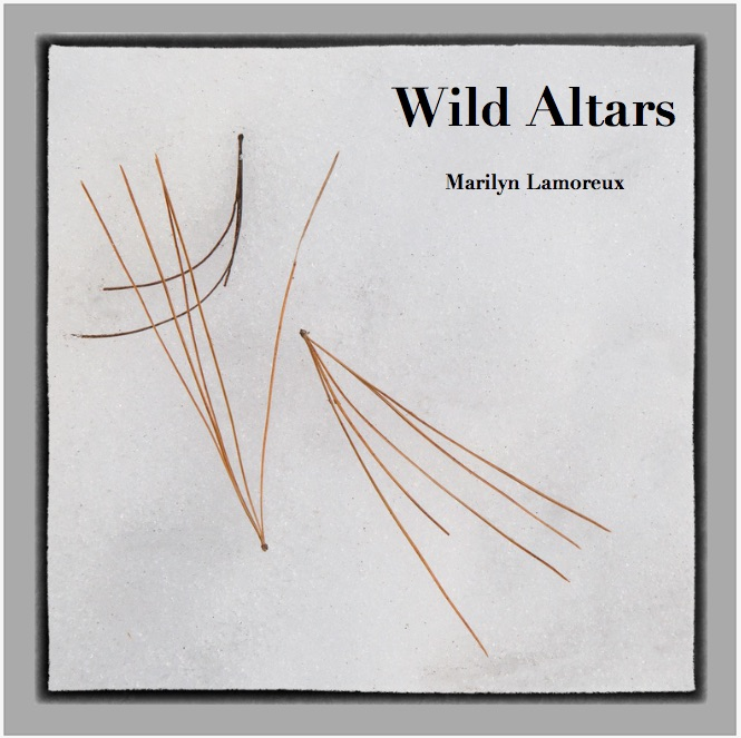 Wild Altars Book is Here